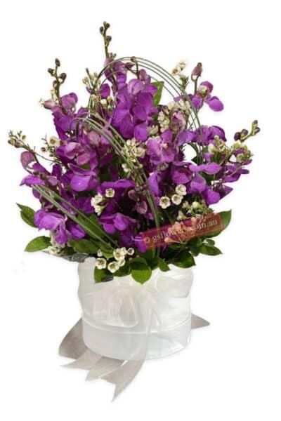 Royal Purple Orchid Fresh Flowers - Floral design